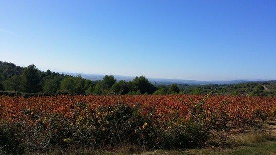 Azillanet, فرنسا: Ici c'est très beau et les gens qui vous accueillent sont de bonne volonté et charmants.