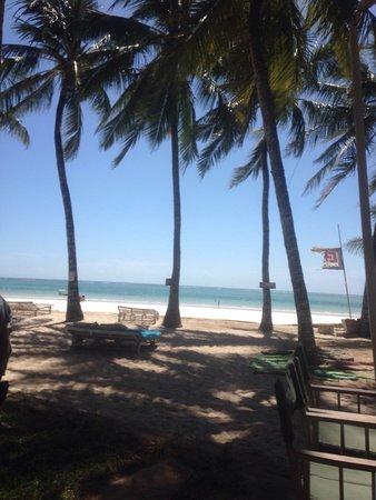 Kenyaways Beach Bed & Breakfast: photo0.jpg