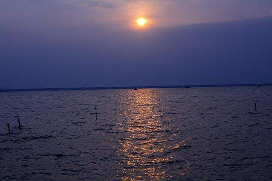 Beach - Picture of The Lily Pad, Kumarakom - Tripadvisor