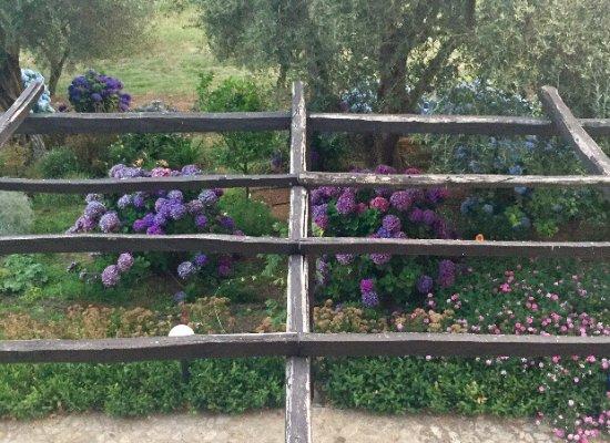 Galatro, Italy: photo2.jpg
