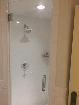 Old Edwards Inn and Spa: Huge walkin shower