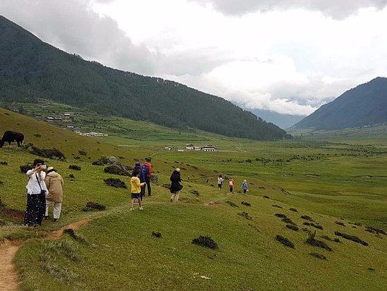 Access Bhutan Tours & Treks: Our tourists taking walk through Gangtey Nature Trail