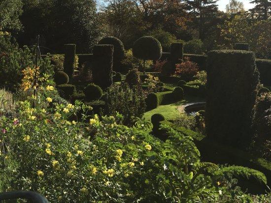 Hambleton, UK: Beautiful garden