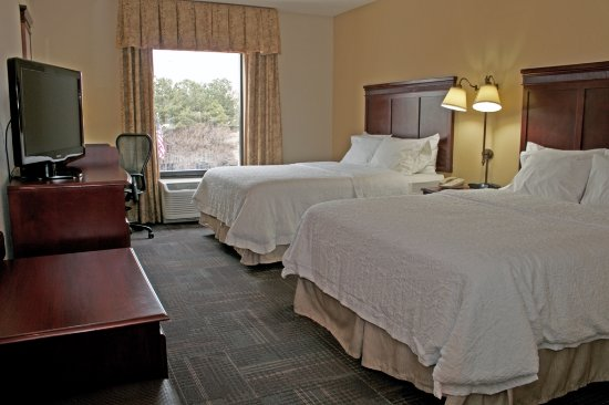 Hampton Inn & Suites Norfolk-Airport Photo