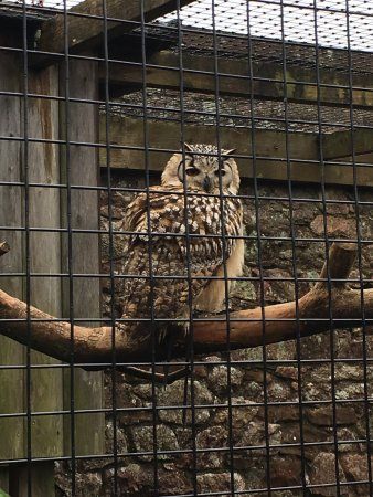 Ravenglass, UK: photo4.jpg