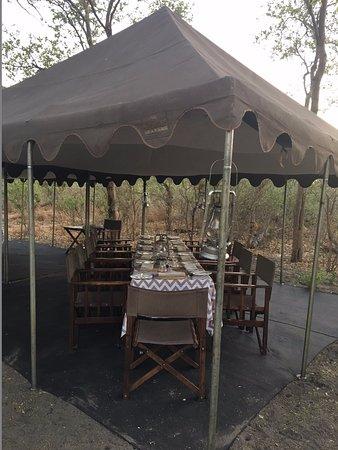Chobe National Park Photo