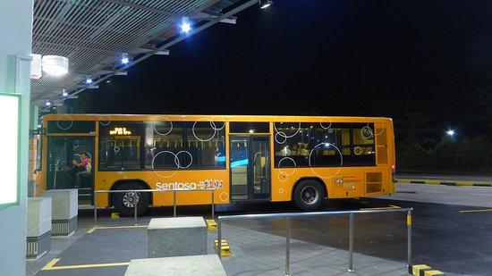 The Sentosa Bus Sentosa Island Top Tips Before You Go