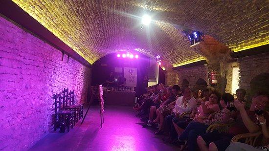 Museo del Baile Flamenco: zaaltje gezien vanaf onze plek aan de zijkant.