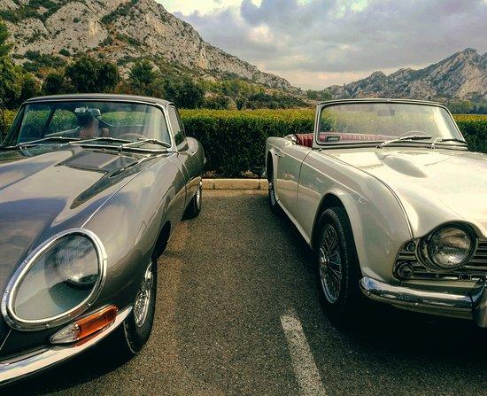 Provence Classics