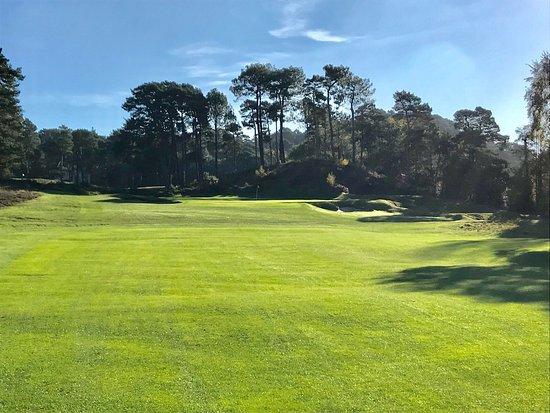 Parkstone Golf Club: photo2.jpg