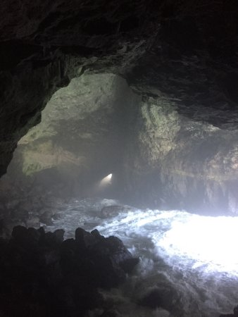 Sea Lion Caves : photo1.jpg