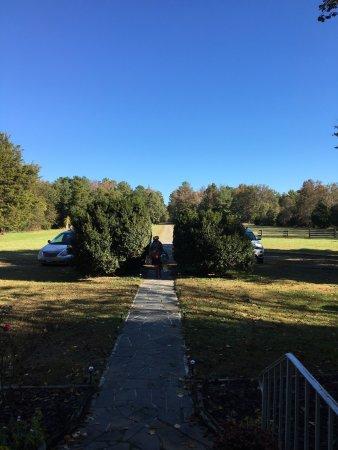 White Stone, Вирджиния: Flowering Fields B&B