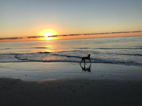Omni Hilton Head Oceanfront Resort: photo0.jpg