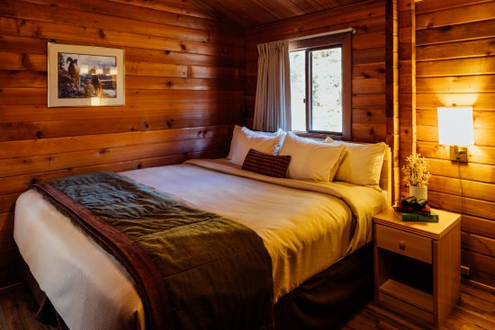 Denali Cabins: Accessible cabins available.