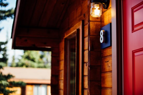 Denali Cabins: Classic cabins surrounded by towering trees in the heart of the wilderness.