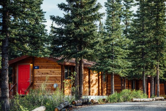 Denali Cabins: Stroll around the grounds.