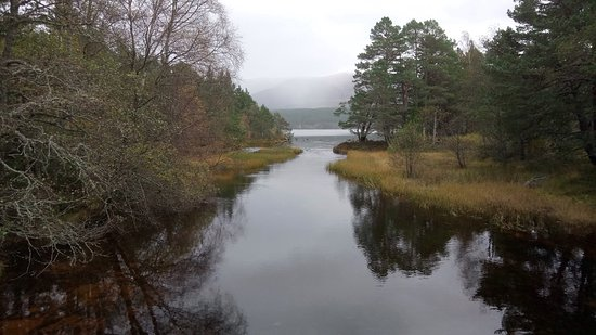 Aviemore, UK: photo2.jpg