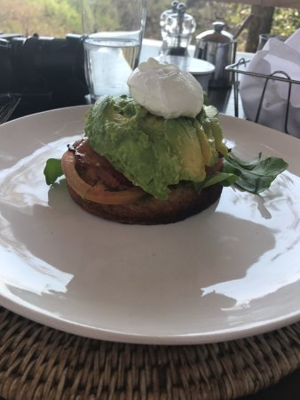 Londolozi Private Game Reserve: Avocado Toast