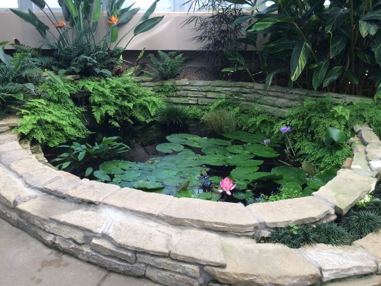 Tipton, MI: Hidden Lake Garden