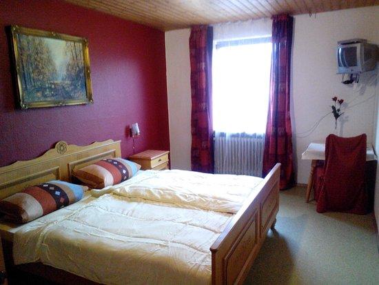 Spiegelau, Germany: Zimmer mit Bergblick, Nr. 6, mit eigener Sitzecke, TV, Bad und Dusche