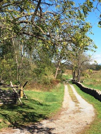 Sharpsburg, MD: Battlefield trails.
