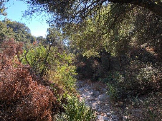 Backbone Trail: photo0.jpg