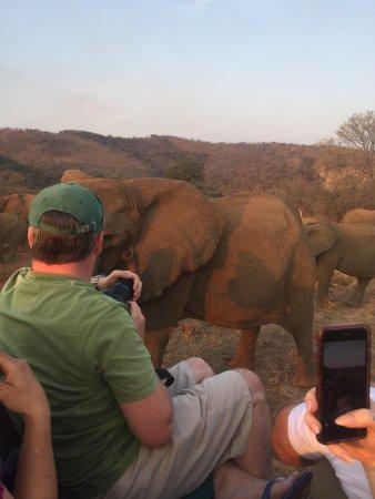 Pongola, Sydafrika: photo0.jpg