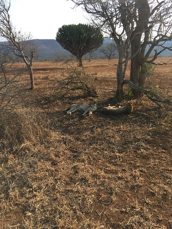 Pongola, جنوب أفريقيا: photo1.jpg