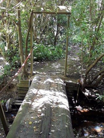 Manawatu-Wanganui Region, New Zealand: On the nature trail