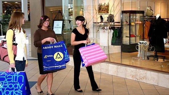 Elmira, NY: Shopping at the Arnot Mall