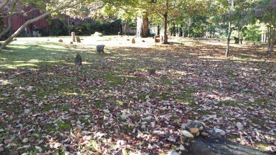 Revolutionary War Graveyard