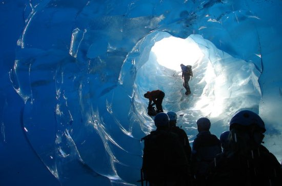 Juneau Shore Excursion: Mendenhall Glacier Trek