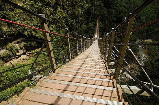 Nantou Walking On Sky Ladder Day Tour...