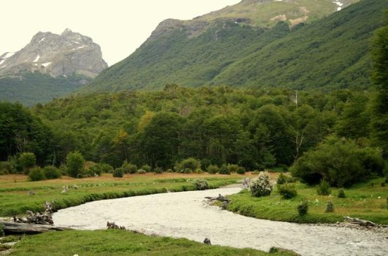 Tierra del Fuego National Park Tour...