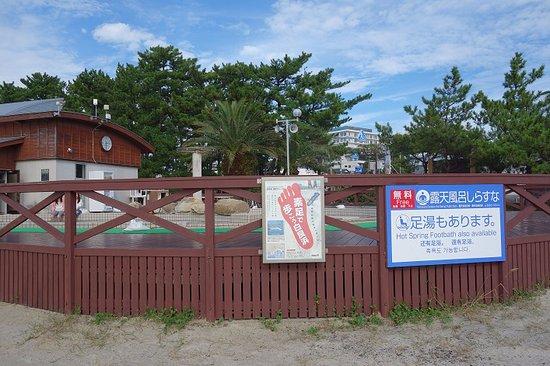Shirasuna