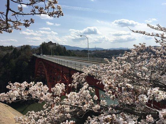 https://media-cdn.tripadvisor.com/media/photo-s/11/1a/0c/5f/cherry-blossoms-and-enakyo.jpg