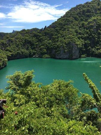 Mu Ko Ang Thong National Park: photo5.jpg