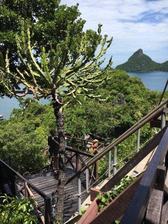 Mu Ko Ang Thong National Park: photo7.jpg