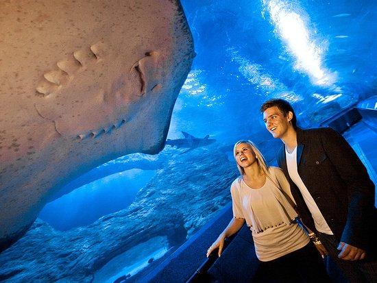 Hillarys, Australia: Underwater Tunnel