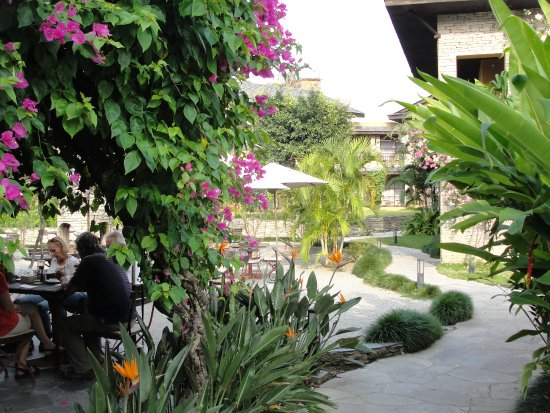 Temple Tree Resort & Spa: On peut manger à l'intérieur ou à l'extérieur, près du bar