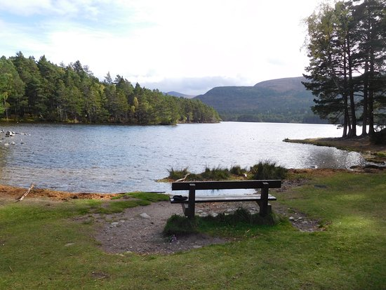 Aviemore, UK: View of the loch