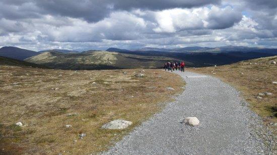 Dovre, Norway: המסלול לנקודת התצפית