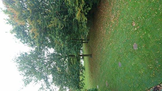 Pontlands Park: DSC_0011_large.jpg