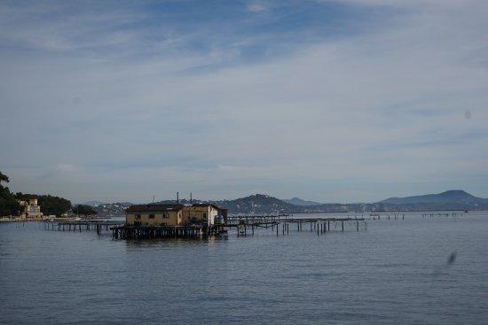 Rade de Toulon : Les parcs à huîtres