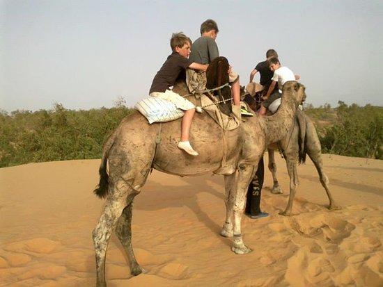 Mbour, Σενεγάλη: dans le desert de lompoul a dos de drommadaire