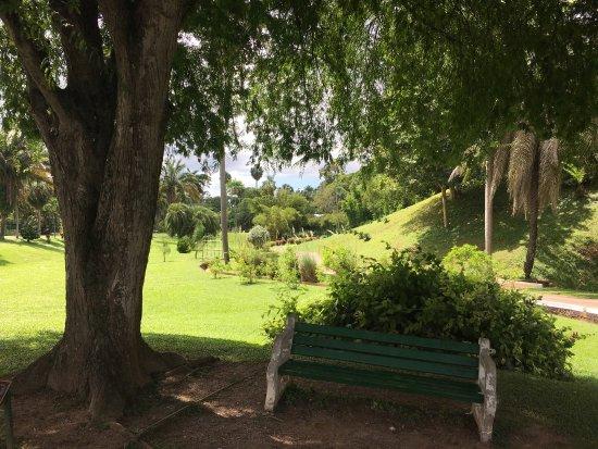 Royal Botanical Gardens: photo1.jpg