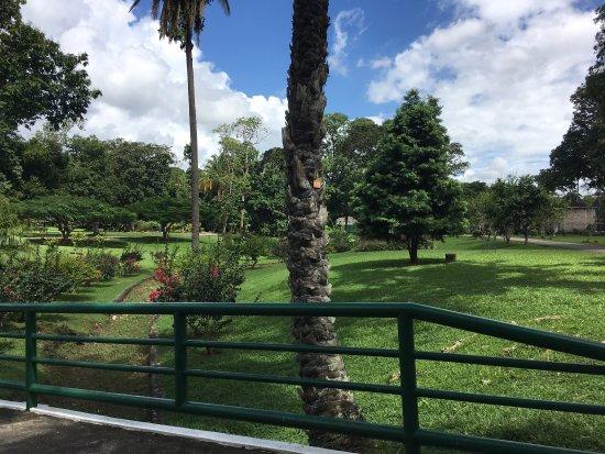 Royal Botanical Gardens: photo3.jpg