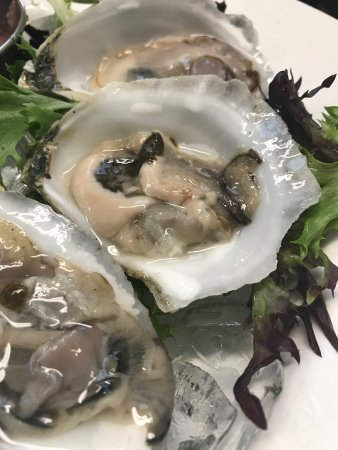 Bethel, ME: Oysters