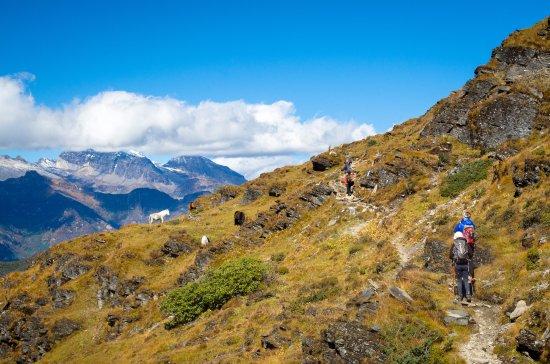 Druk Path Trek In The Himalayas Bhutan Picture Of Satori