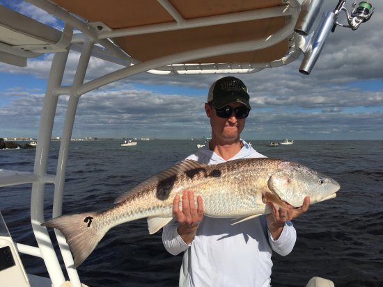 Picture of the fishing guy private charters for Deep sea fishing new smyrna beach